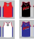 jersey-ptt-2016-nw-colors